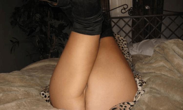 arrapatissima cougar